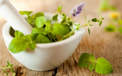 Busting Common Myths About Naturopathic Medicine