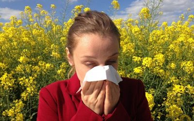 How Chiropractic Care Helps With Allergies